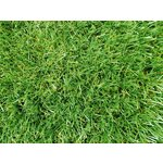 more details on Deluxe Lawn Artificial Grass - 2 x 4 Metres.