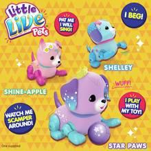 Little Live Pets Lil' Precious Pups Single Pack