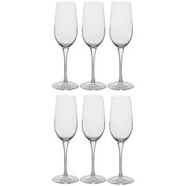 Habitat Joy Set of 6 Champagne Flutes