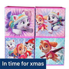 Argos Home Paw Patrol Skye Canvas Boxes - Set of 4