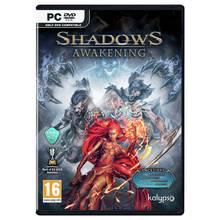 Shadows Awakening PC Game