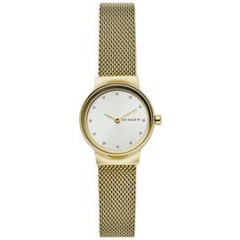 Skagen Silver Dial Ladies Stainless Steel Watch