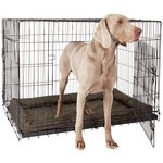 more details on Double Door Pet Cage - Extra Large.