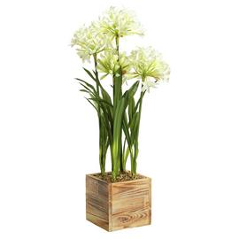 Argos Home Faux Agapanthus Square Pot