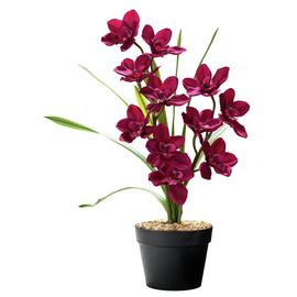 Argos Home Faux Cymbidium in Plastic Pot - Dark Pink
