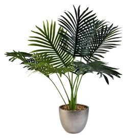 Argos Home Palm Luxe House Plant