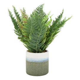 Argos Home Highlands Faux Fern Plant