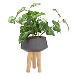 Argos Home Apartment Living Ceramic Planter