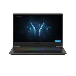 Medion Erazer 17in i7 8GB 1TB 256GB GTX1660TI Gaming Laptop
