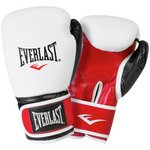 more details on Everlast 14oz Leather Boxing Gloves.