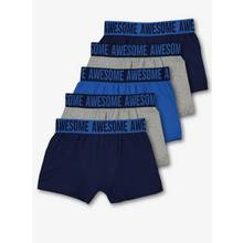 Blue & Grey Trunks 5 Pack