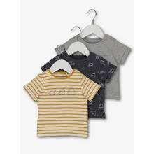 Multicoloured Dinosaur T-Shirts 3 Pack (0-24 Months)