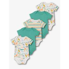 Multicoloured Dinosaur Safari Bodysuit 5 Pack (0-36 Months)