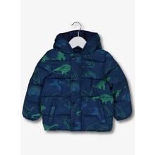 Blue & Green Dinosaur Print Padded Coat