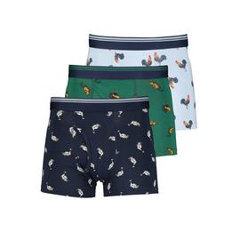 Multicoloured Heritage Bird Print Trunks 3 Pack
