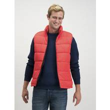 Red Eco Thermolite Shower Resistant Gilet