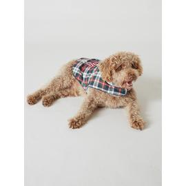 Christmas Family Blue Elf Check Dog Coat