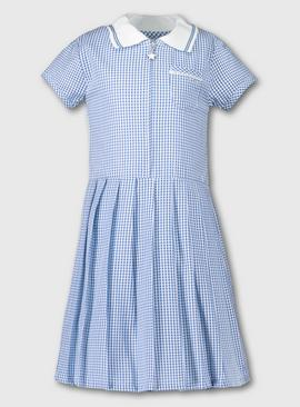 Blue Gingham Sporty Collar Pleated School Dress