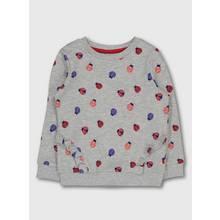 Grey Ladybird Print Crew Neck Sweatshirt