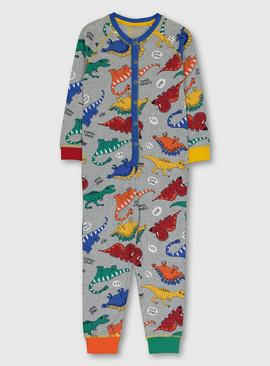 Grey Bright Dinosaur Print All In One